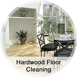 Hardwood Foor Cleaning
