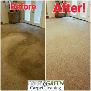 Carpet Cleaning St. Louis, MO